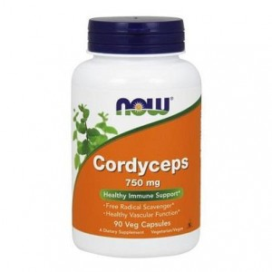 CORDYCEPS 750mg 90kaps - suplement diety